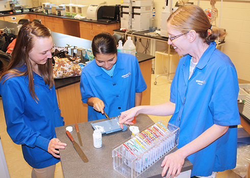 Students at Northwest Iowa Community College work with a licensed pharmacist to learn how to dispense prescriptions.<br>